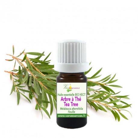 Huile essentielle Arbre à thé Tea tree bio